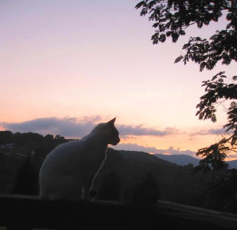 Sunset on Hillcreek Acres Drive