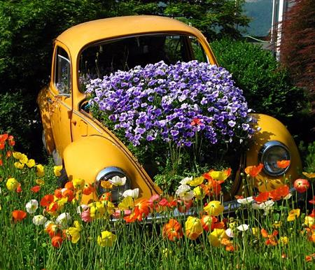 car of flowers