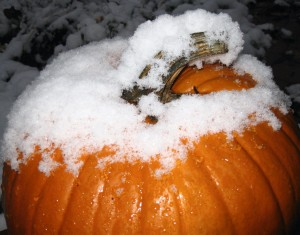 Snow on Pumpkin
