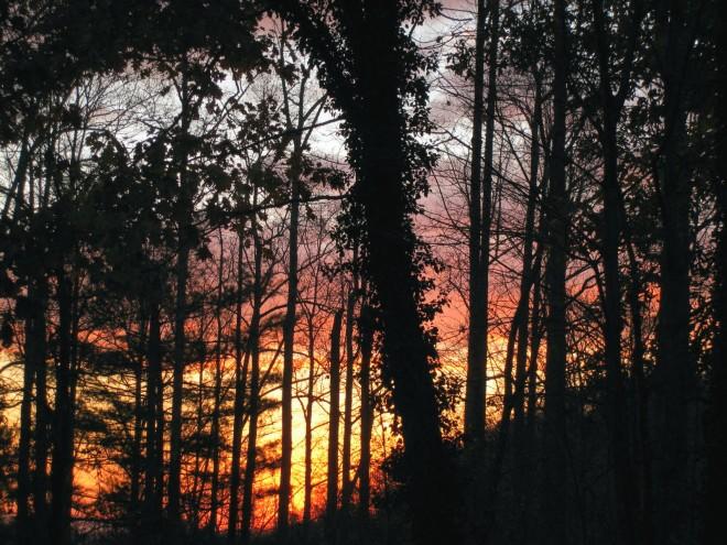 Sunrise 11-12-14