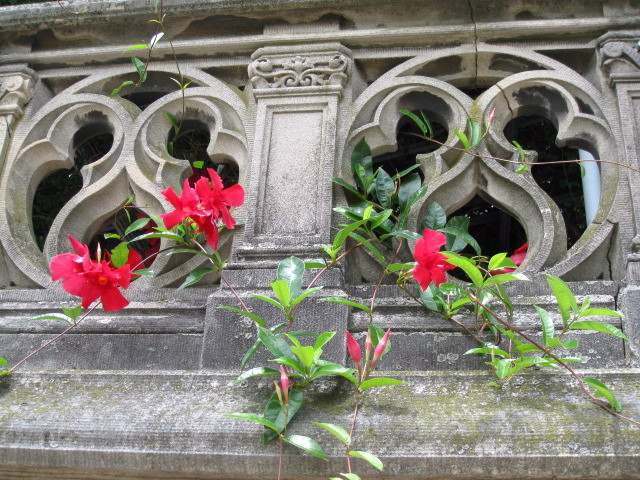 Red Flowers On Gray Wall 1
